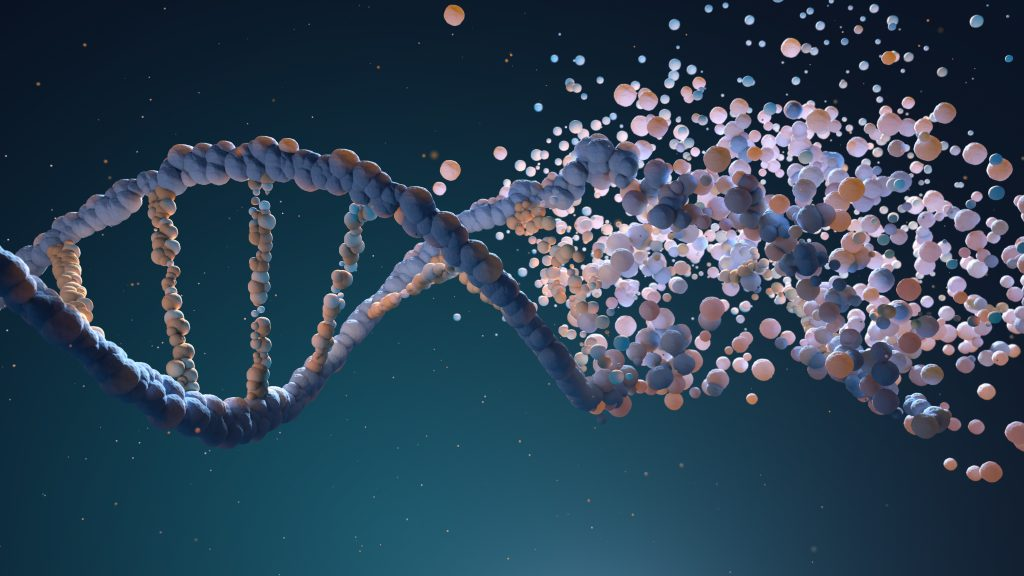 Blasting gene sequences and align